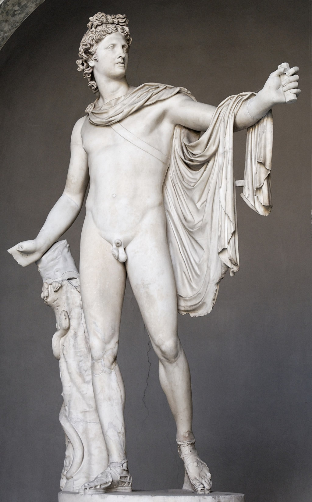 A discussion of the Apollo Belvedere sculpture - TripImprover - Get